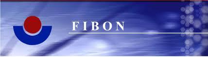 Fibon Berhad (811010-H)